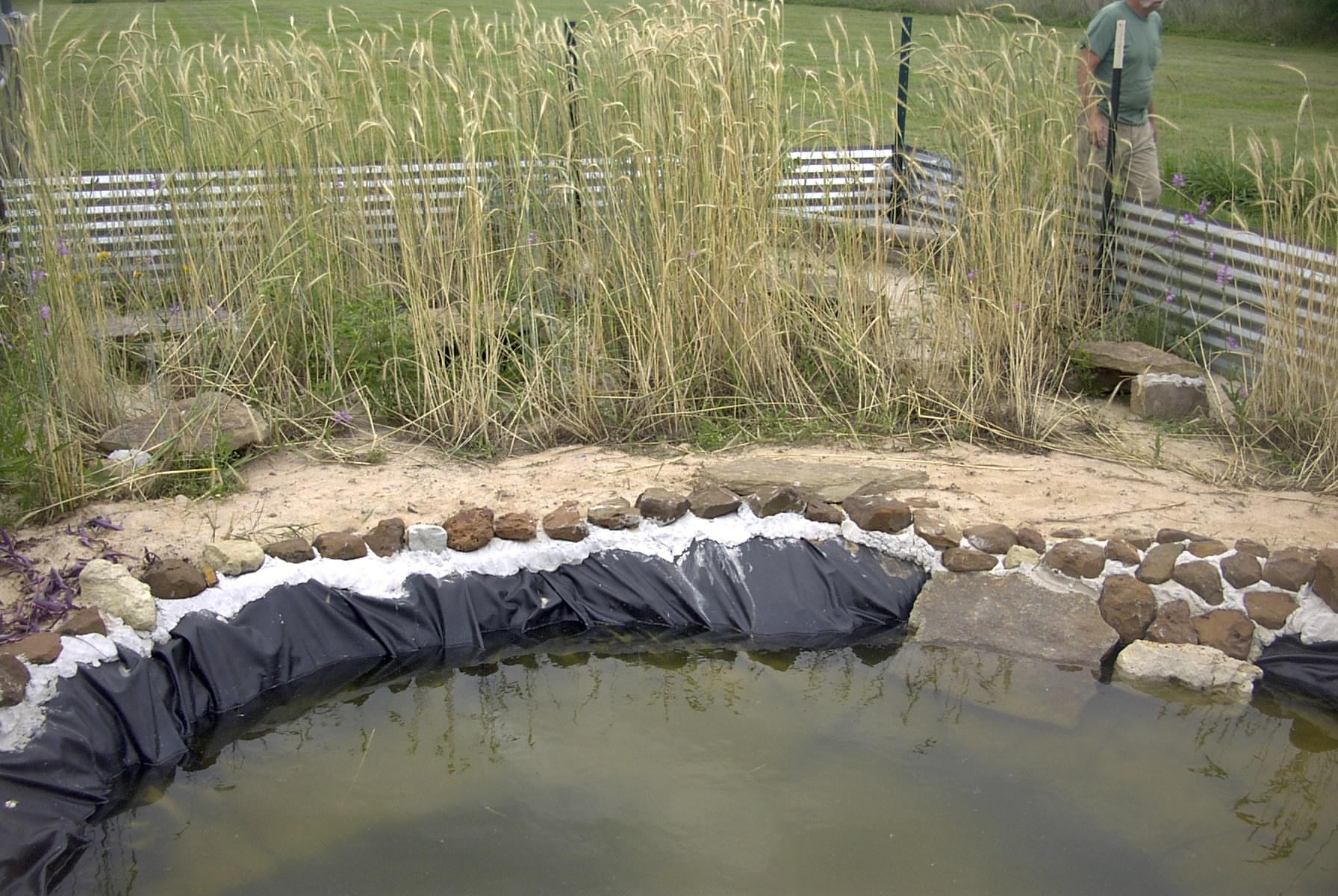1st Aquatic Turtle Habitat Photo Page